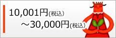 10,001円(税抜)~30,000円(税抜)